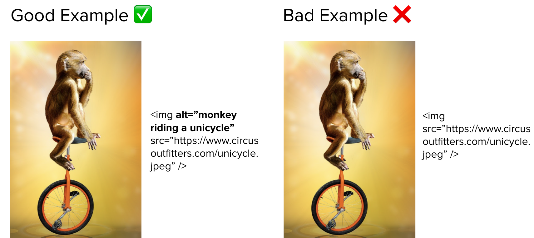 Comparison of two images showing how to use alt text to describe an image
